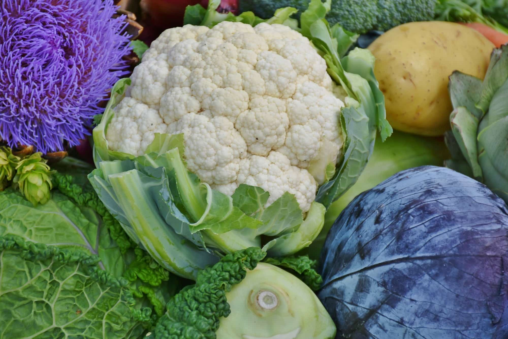 hello cauliflower, welcome to my life