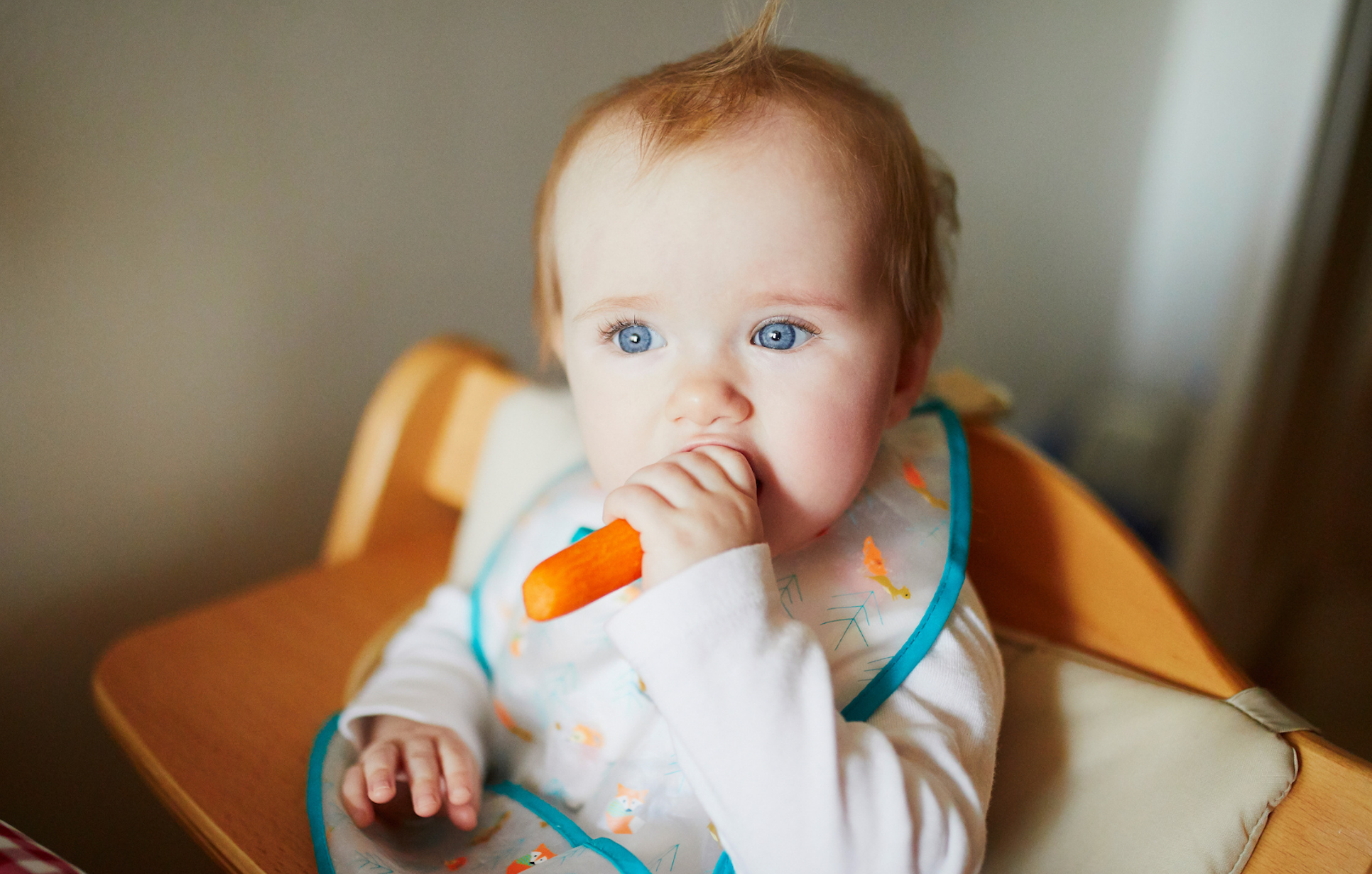 Starting Solids with Confidence! (Plainville, MA)